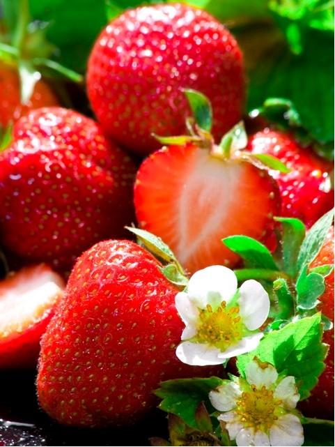 Frigo jahody